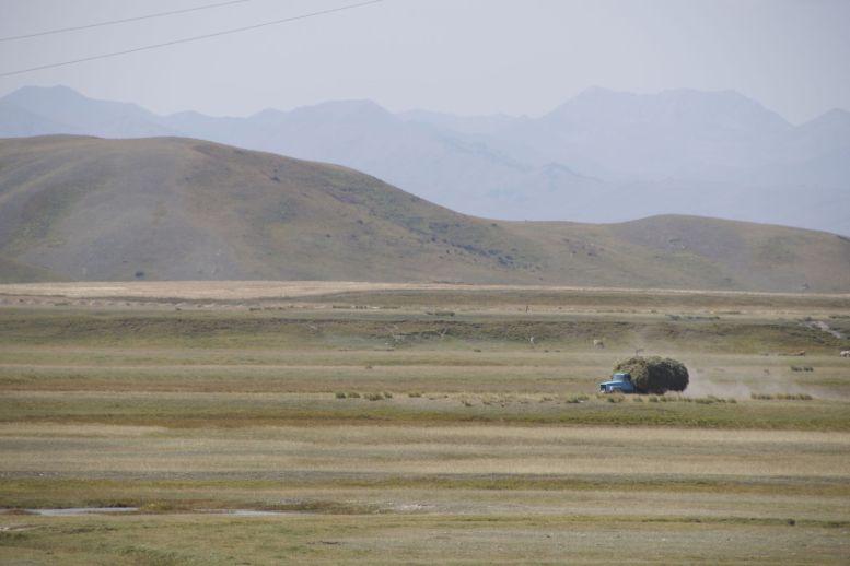 Op de 'echte' weg rijden grote auto's vol hooi, die we mooi vermijden door op de weg in aanleg te rijden.