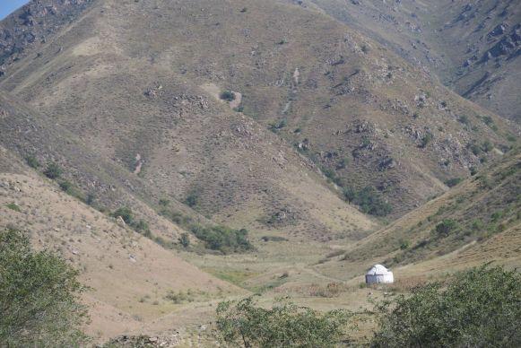 Met grote regelmaat zien we yurts in het landschap.
