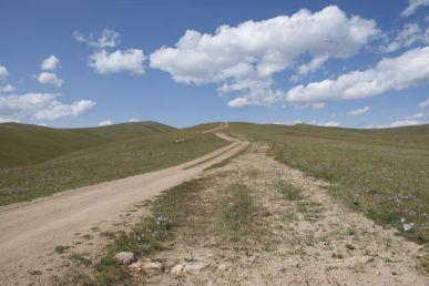 De heuvels zijn zelden steil, maar toch heel vermoeiend.