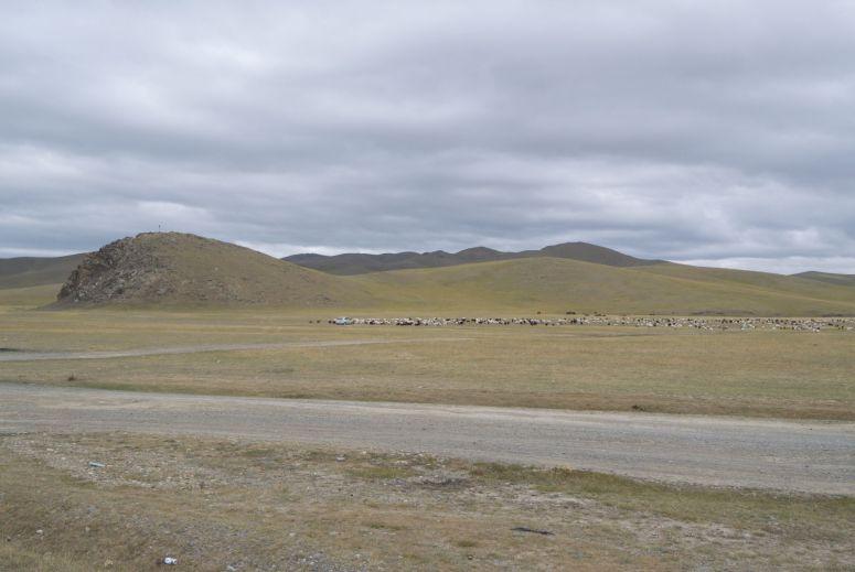 Naast herders te paard of op de motor kun je dus ook een herder tegenkomen in een auto. Waarschijnlijk in de blijkbaar ultieme offroad auto, de Toyota Prius... Bizar hoeveel we er daarvan zijn tegengekomen.