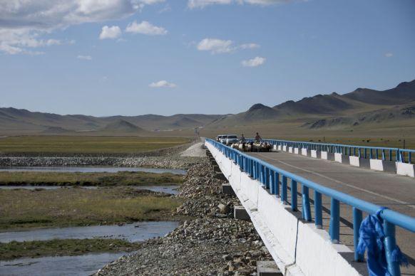 We hebben zowaar een heel klein stukje asfalt vandaag. We staan er vooral op stil, te wachten tot een herder en een stel automobilisten een kudde doodsbange schapen van de ene kant naar de andere kant van de brug gejaagd hebben.
