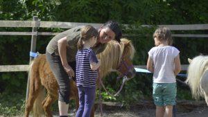 Jutta Einhaus bei der Arbeit als Pferdegestützter Coach