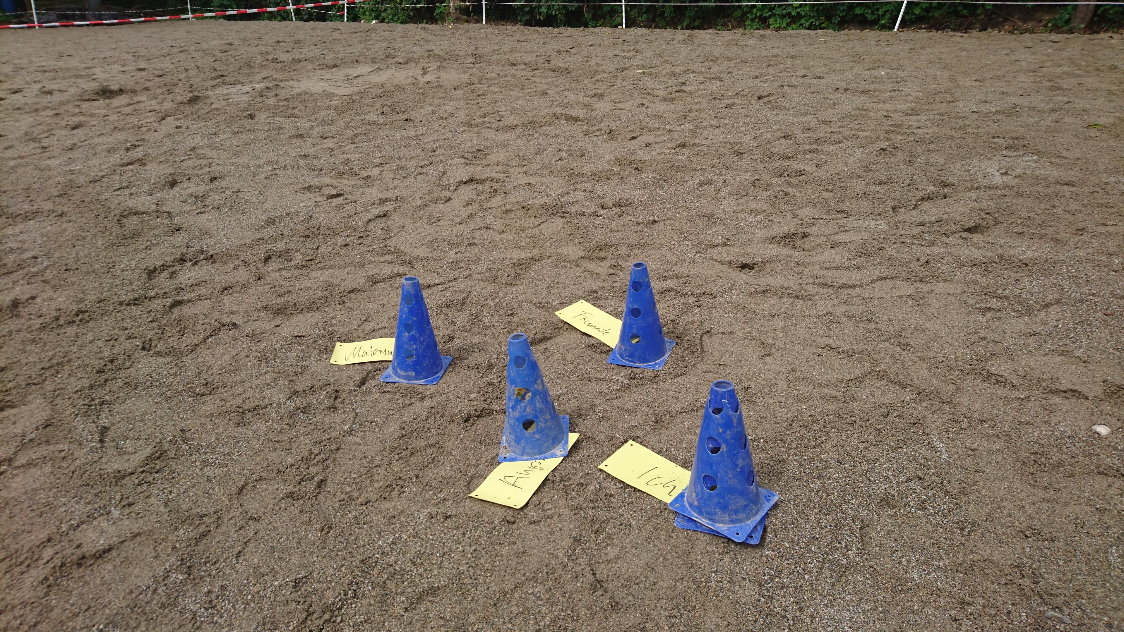 Systemmisches Coaching mit Pferden in Deutschland