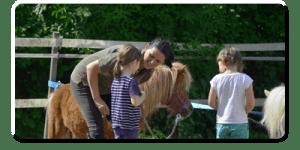 Pferdegestützter Coach Jutta Einhaus