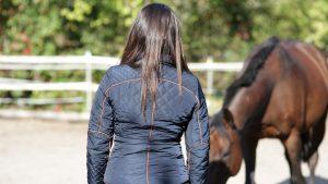 Einzelcoaching mit Pferden