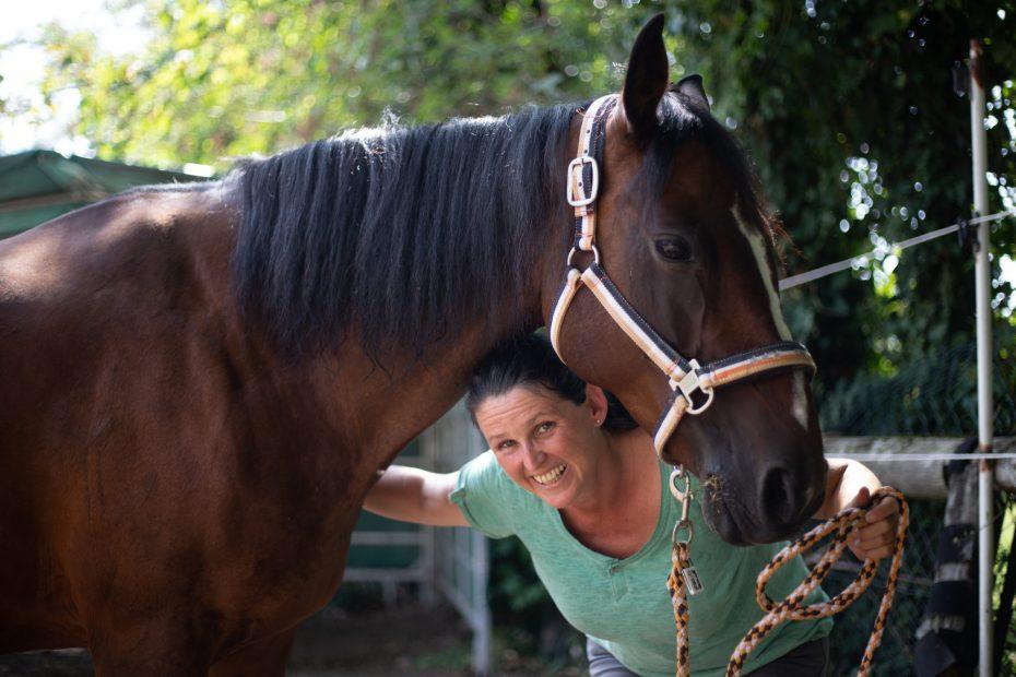 Kostenfreies Telefonat Ausbildung pferdegestützes coaching