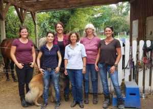 Guppe in Ausbildung zum Pferdegestütztem Coach
