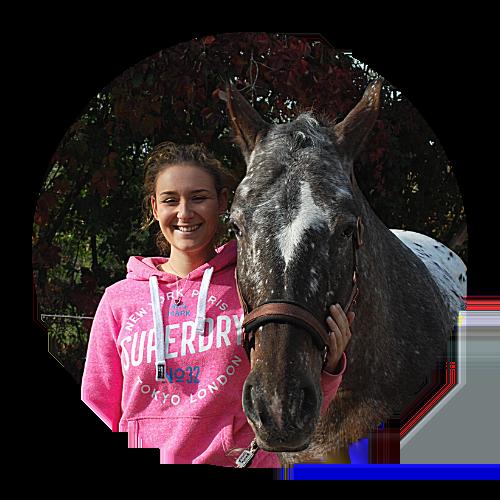 Buchhaltung und Organisation Pferdegestütztes Coaching