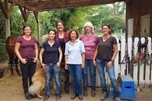 Gruppe in Ausbildung Pferdegestützt