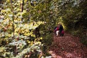 Waldkunst bei Juttta Einhaus und Luise Wegner