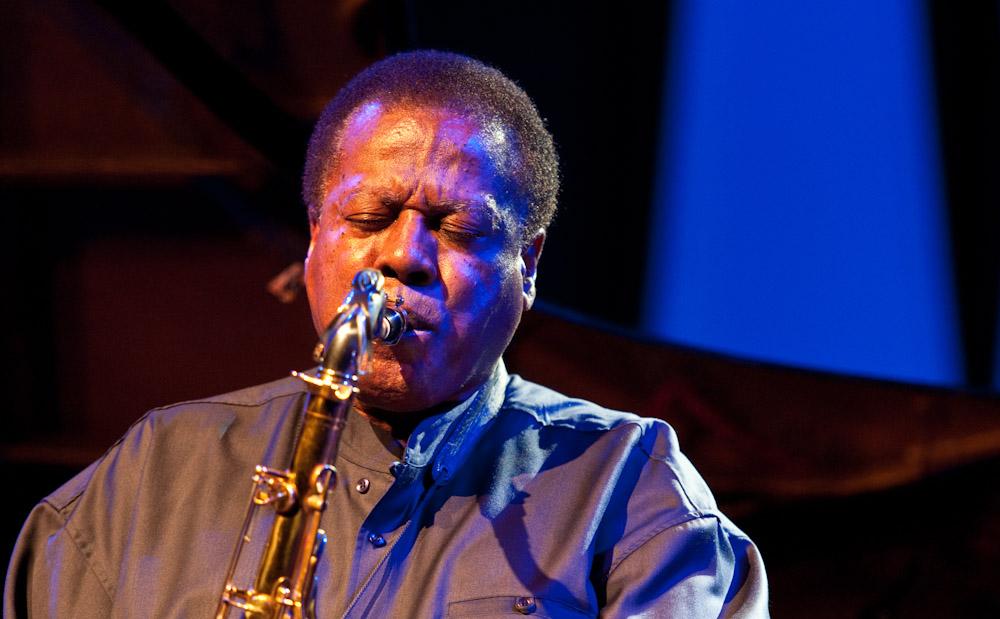 12-Cape-Town-Jazz-Fest-Wayne-Shorter-9383-2 image courtesy John Edwin Mason