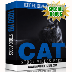 Special Bonuses - November 2017 - Cat 1080 HD Stock Videos Pack