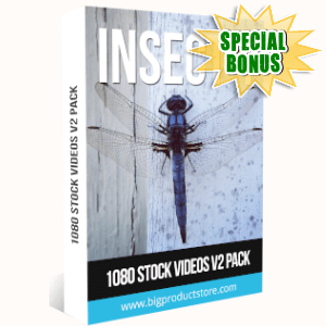 Special Bonuses - September 2019 - Insect 1 - 1080 Stock Videos V2 Pack