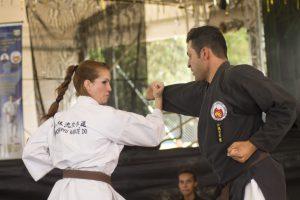 Okinawa Karate-Do Jyureikan: um dos representantes das artes marciais
