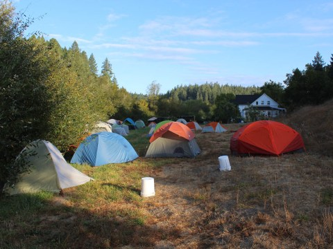 Camping out at Wilderness Torah's Rosh Hashanah retreat (Photo/Gabriel Greschler)