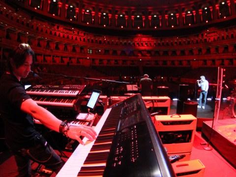 Loren Gold on keyboards (Photo/Courtesy Brian Kehew)