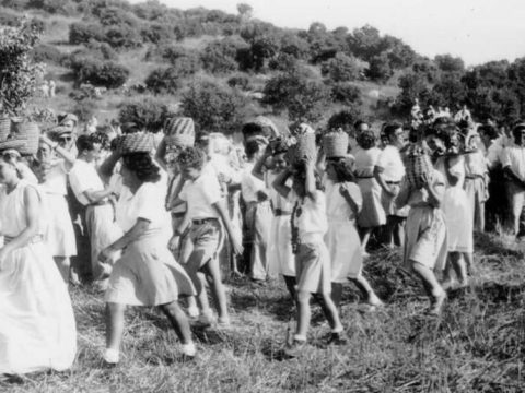 Kibbutz Alonim celebrating the Shavuot harvest with processions and pageants, 1946. (Photo/Central Zionist Archives)