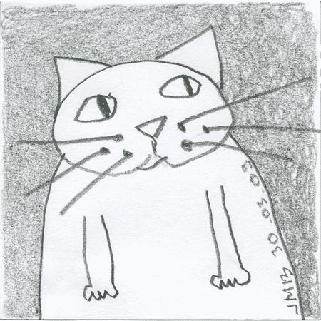 le chat que j'ai dessiné pendant que j'écoutai la chronique de Stéphane Guillon sur France-Inter