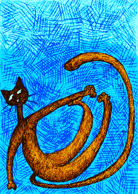 chat orange et bleu 2009-06-22