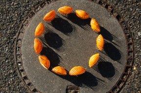 cercle de prisons oranges 1