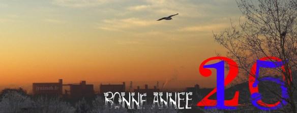 jyaimeb-BONNE-ANNEE-2015