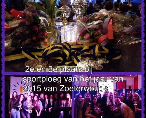 Sportploeg van het jaar 2015
