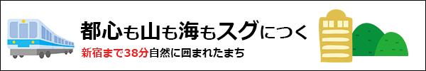 hasshimototte02