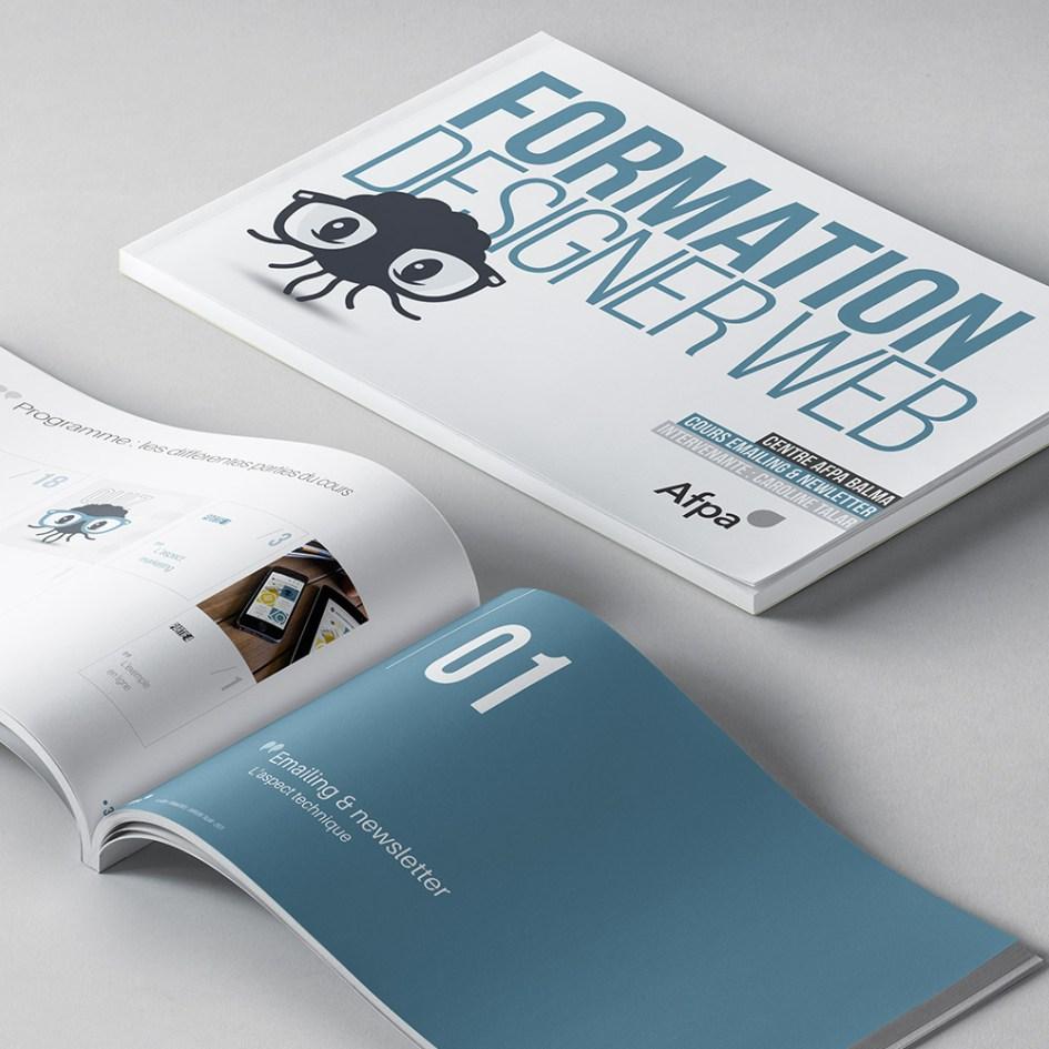 """AFPA Formation Designer Web : cours """"emailing et newsletter"""""""