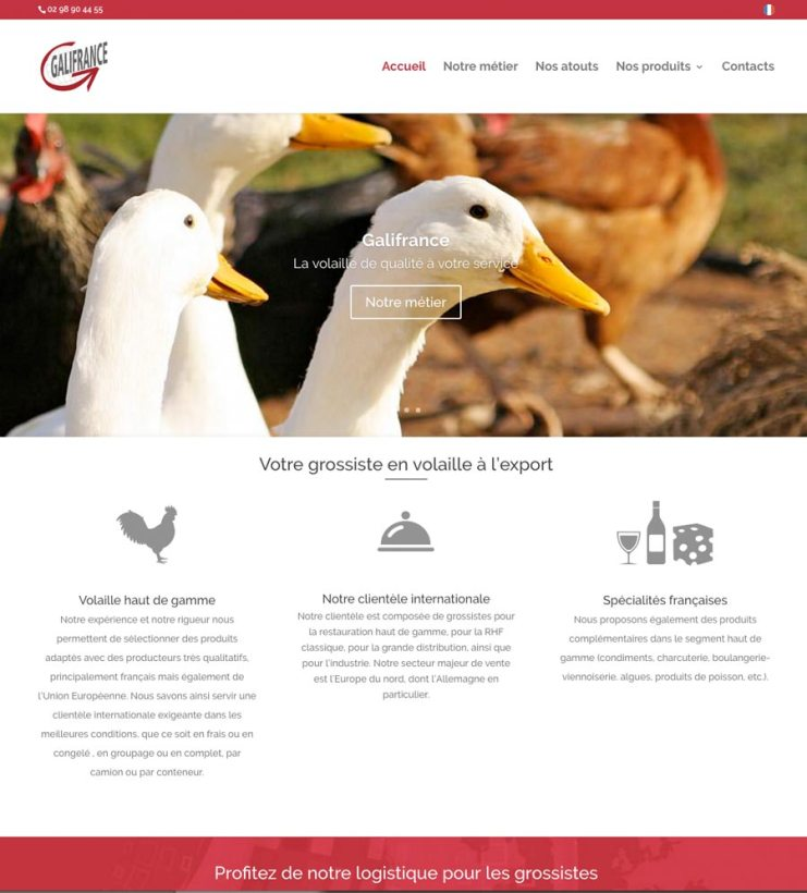 Site internet wordpress galifrance