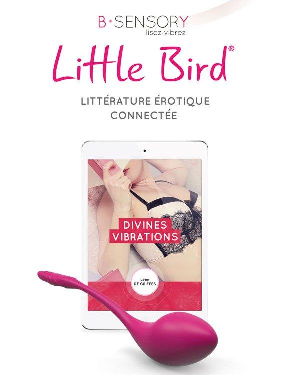 Packs Little Bird