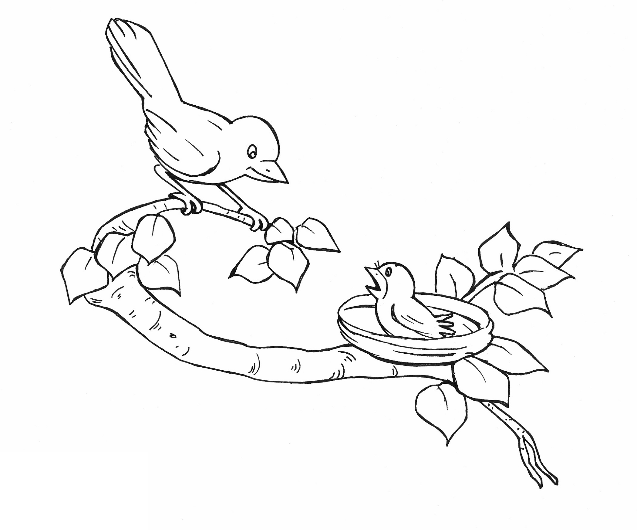 Bird Coloring Pages Flying