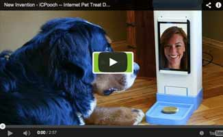 iCPooch - Invention that Could Help Separation Anxiety