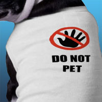 Do not pet dog shirt for dogs