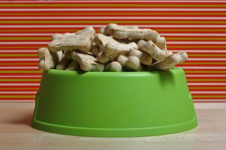 are you feeding your dog too many carbs