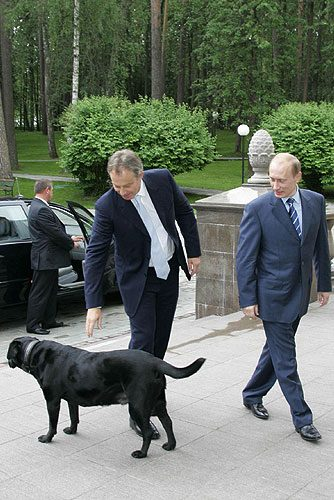 Koni - Vladimir Putin dog - Tony Blair arriving at the President of Russias residence