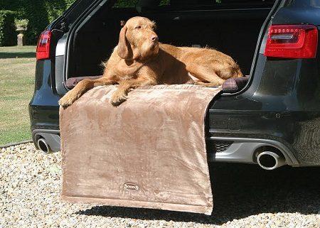 Scruffs balmoral dog bed