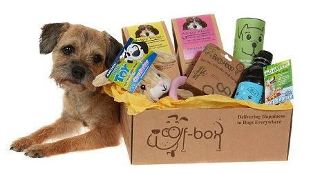 Woof-Box dog subscription treat box