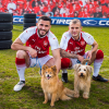 WATCH: These Premier League Footballers Take on an Agility Course With Rescue Dogs