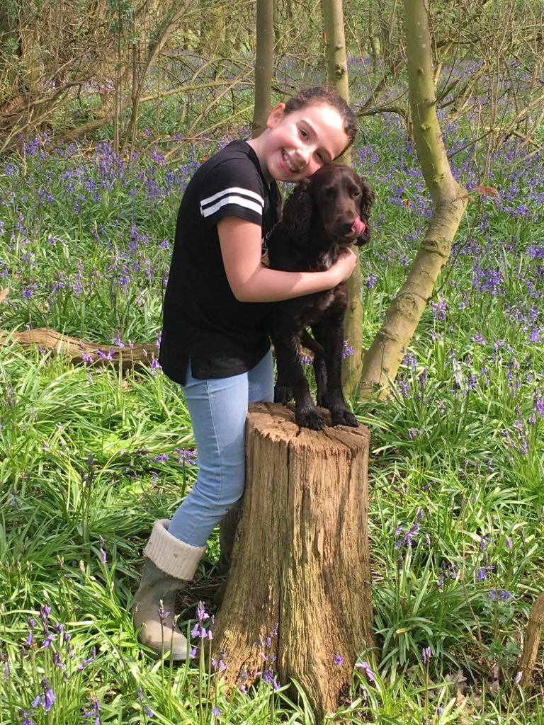 Dog Friendly Bakewell Gets Paws Up From Diggerley & Merlin