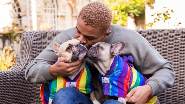 Nathan Henry: 'My Dogs Are My World'