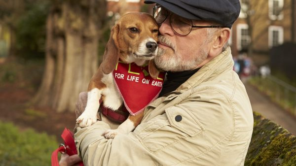 Peter Egan: 'My Dogs are a Vital Part of My Life'