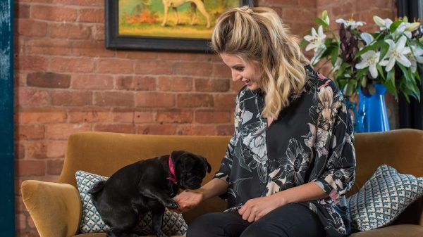 Celebrity Dog Owner Review: Have We Found the Perfect Dog Walking Coat?