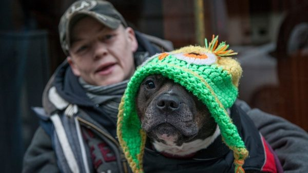 'I Wanted to Help Homeless People & Their Pets, so This Is What I Did'