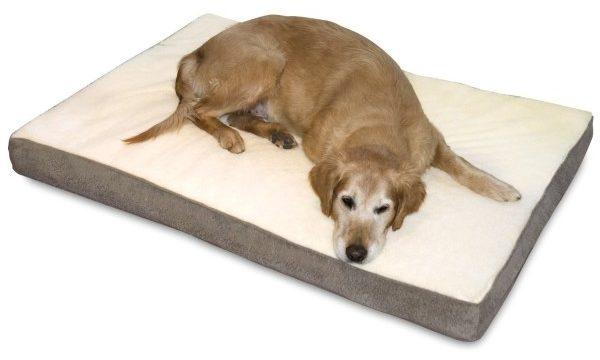 best orthopedic dog beds for older dogs