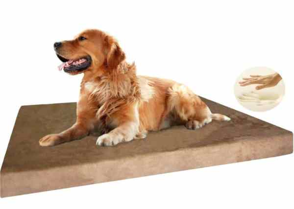 5 best dog beds for senior arthritic dogs for Best dog bed for large older dogs