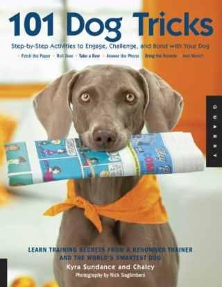 dog training trick books