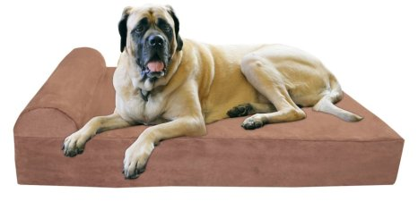 best dog beds for larger dogs