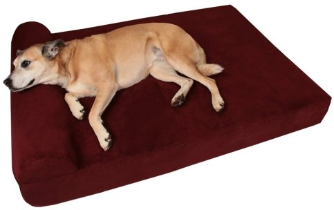 dog bed gift