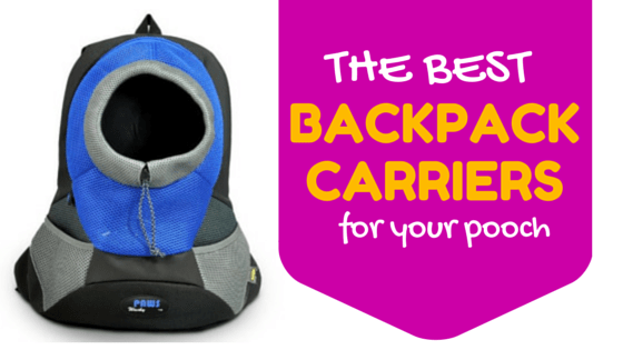 best backpack carriers for your dog
