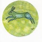 Tarot-Totemdierenorakel, Haas